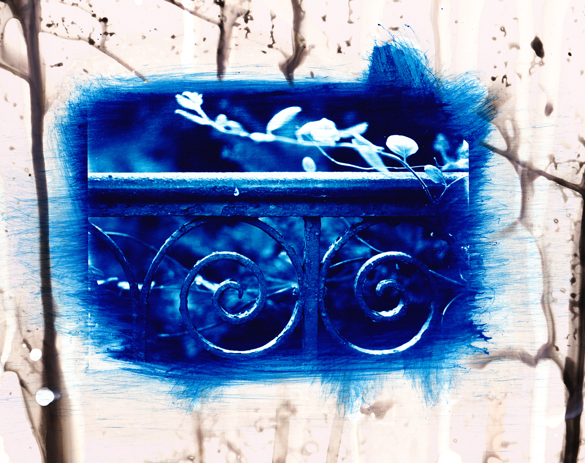 Cyanotype on photo paper image of a metal fence
