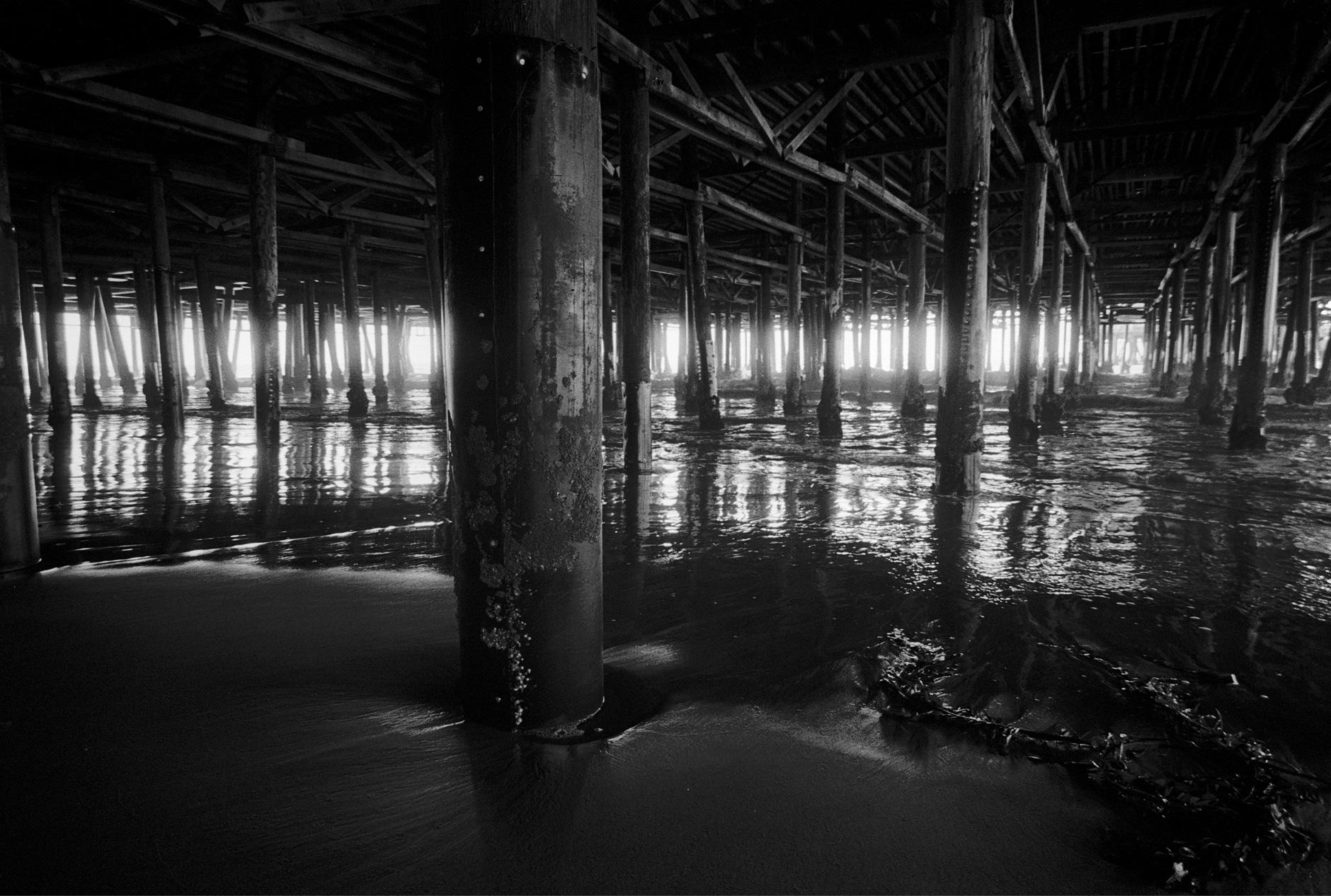 Black and white photo of wood pillars