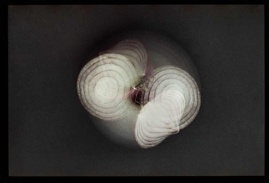 Onions double exposure abstract image